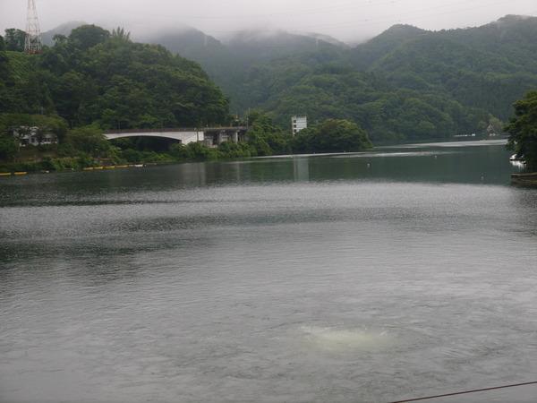0805_相模湖.JPG