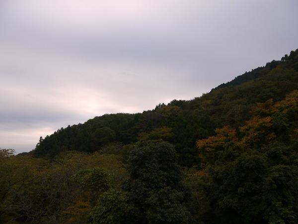 0808_宮が瀬への上り.JPG