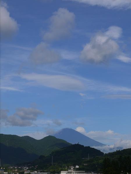 0810_夏富士.JPG