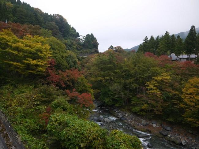 0814_道志村の紅葉_S.JPG
