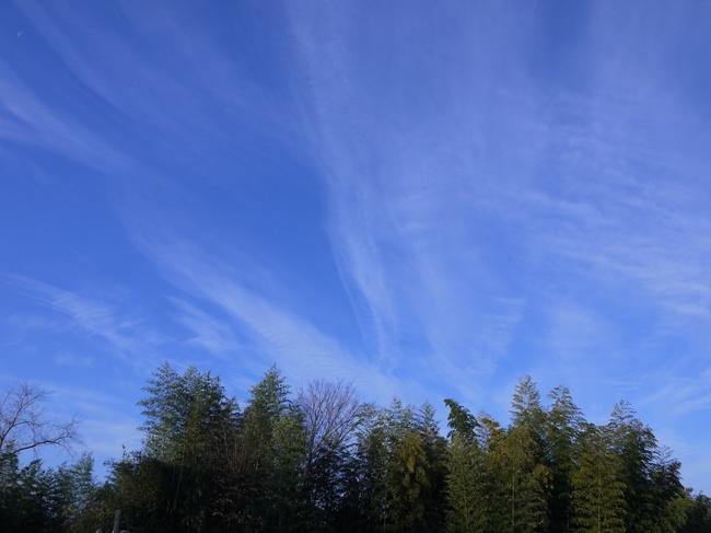 0818_渋沢丘陵の雲.JPG