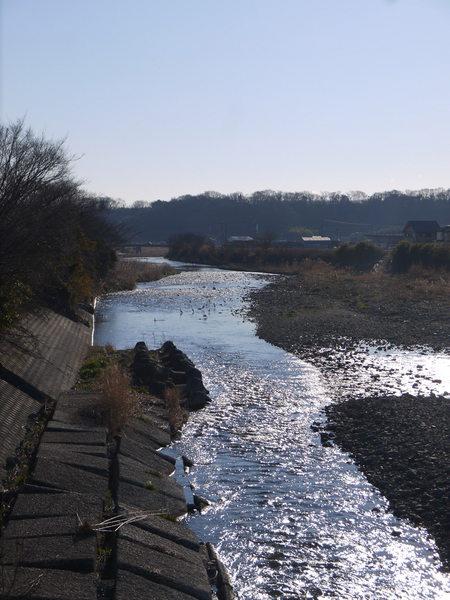 0825_金目川バードサンクチャリ.JPG
