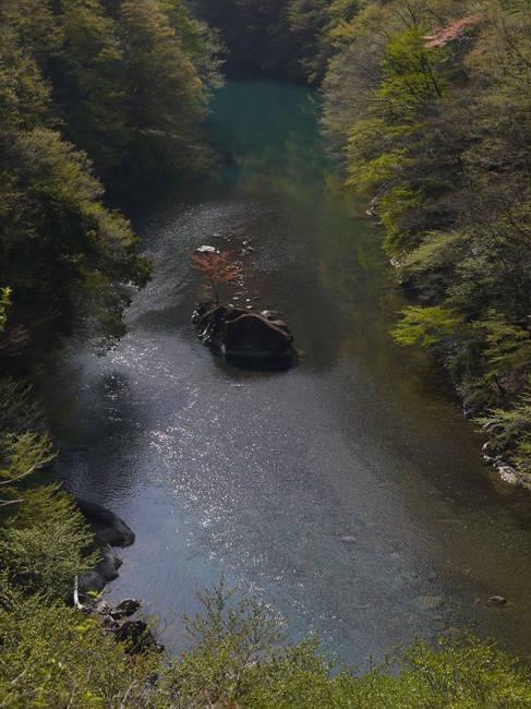 0826_熊倉川の深い淵.JPG
