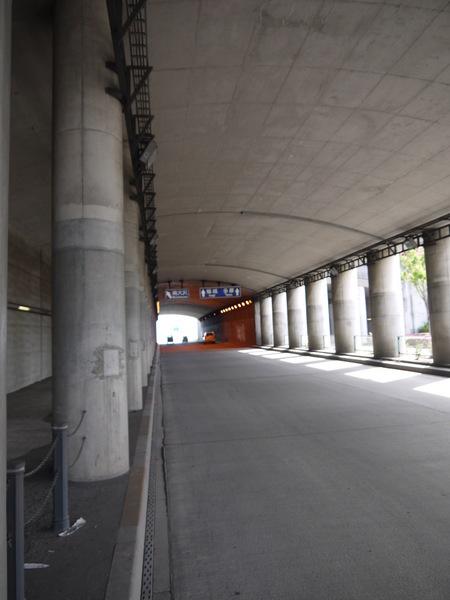 0829_尾根幹入口.JPG
