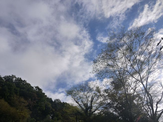 0831_大垂水への登り.JPG
