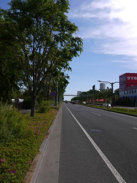 0833_南多摩尾根幹道路.JPG