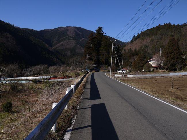 0834_山梨上野原の里山.JPG