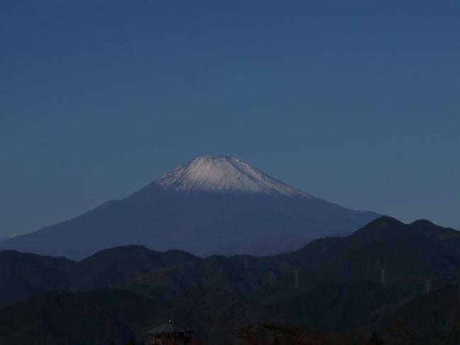 0836_菜の花台から富士山.JPG