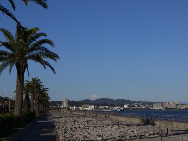 0839_馬堀海岸より富士.JPG