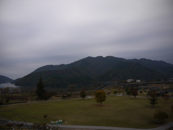 0844_宮が瀬公園紅葉2.JPG