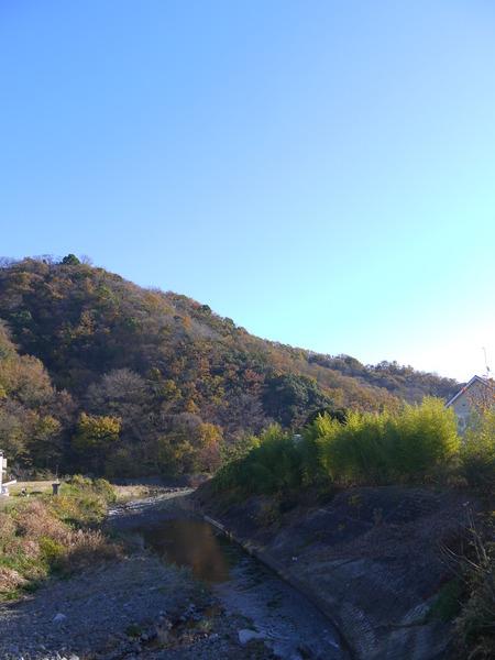 0849_冬枯れの金目川.JPG