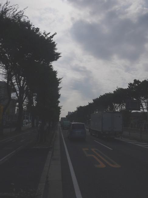 0851_国道16号線.JPG