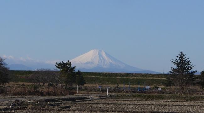 0852_冬富士.JPG