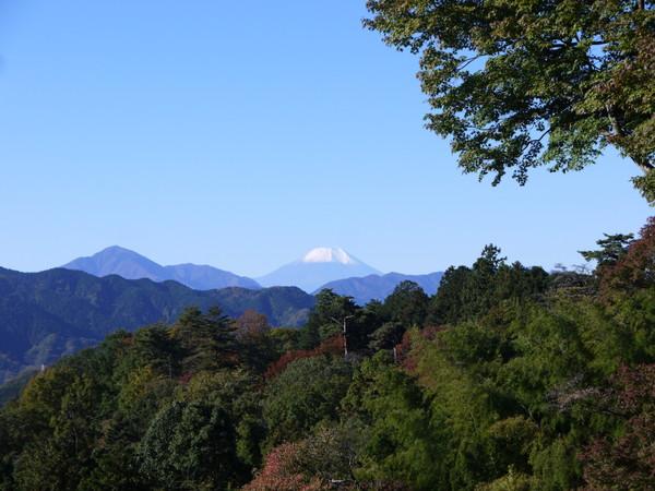 0853_大垂水峠から富士.JPG