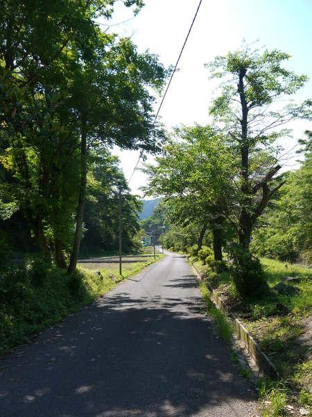 0855_虫沢の沢沿いの気持ちよい道.JPG