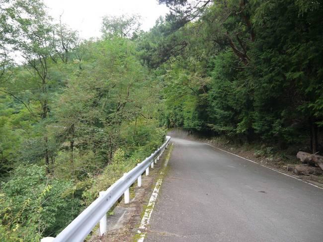 0858_笹子峠の静かな登り.JPG
