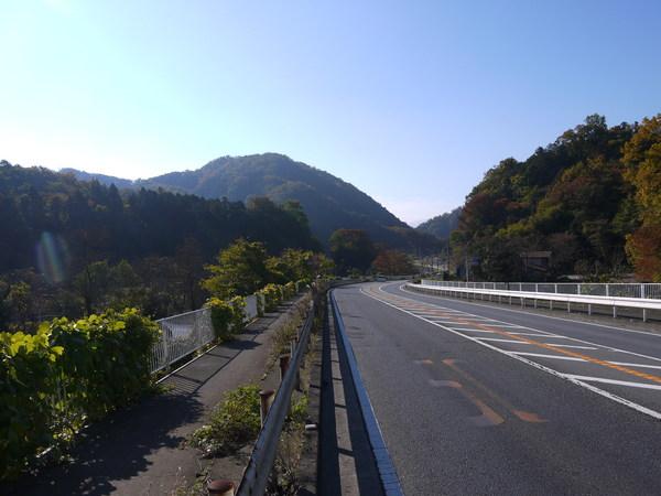 0900_渋沢下り.JPG