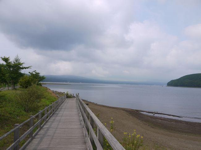 0902_富士山は暑い雲の向こう.JPG