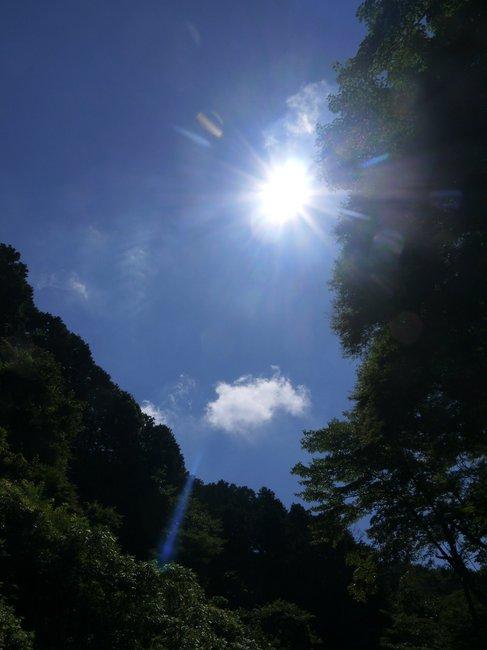 0914_標高394m大垂水峠.JPG