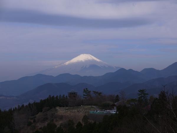 0916_菜の花台から富士.JPG