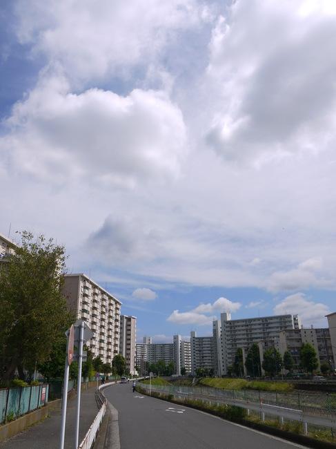 0944_境川にルート変更.JPG