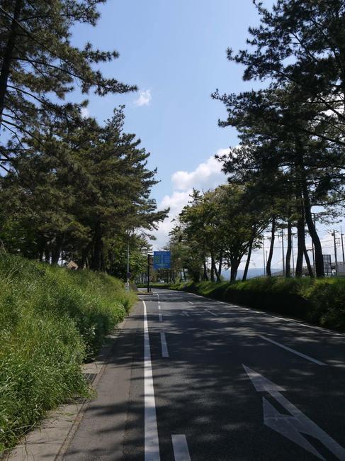 0951_箱根峠への登り.JPG