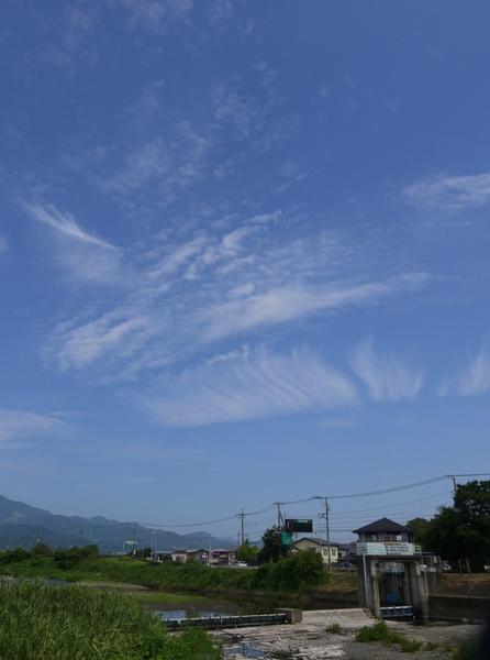 1004_金目川から丹沢.JPG