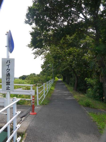 1005_金目川サイクリングロード.JPG