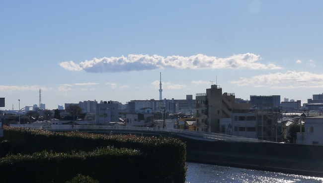 1007_スカイツリー遠望.JPG