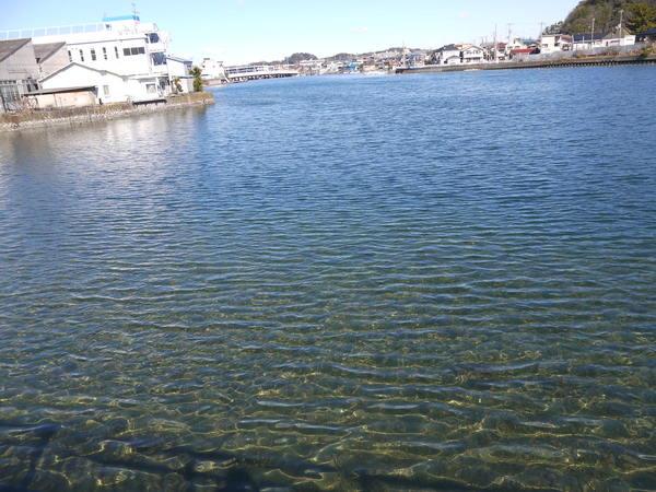 1020_結構きれいな金沢八景の海.JPG