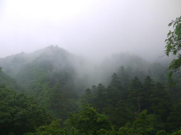 1042_相変わらず厚い霧.JPG