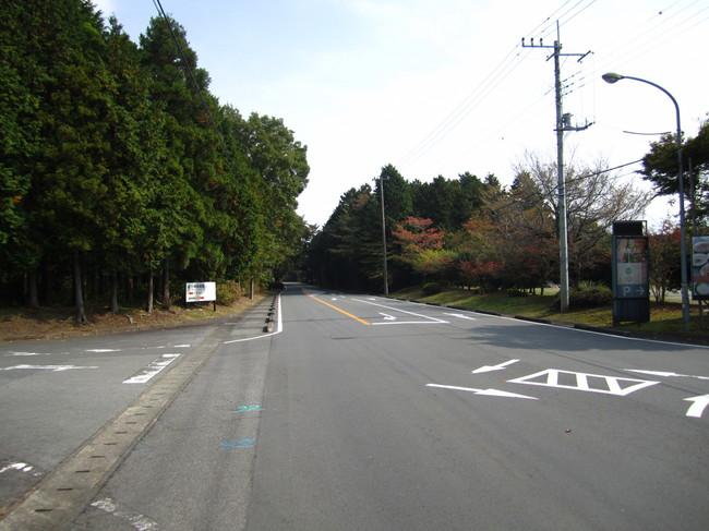 1057_県道151号線.JPG