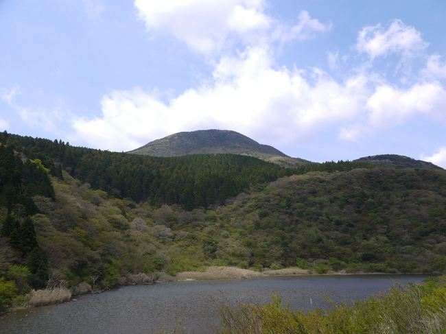 1208_箱根精進池の新緑.JPG