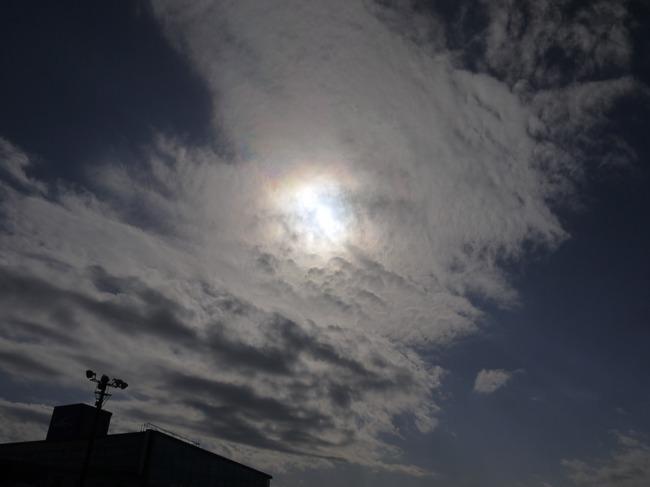 1212_太陽の大輪.JPG
