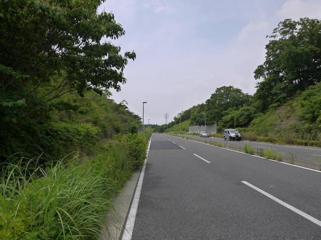 1217_静かな戸塚丘陵.JPG