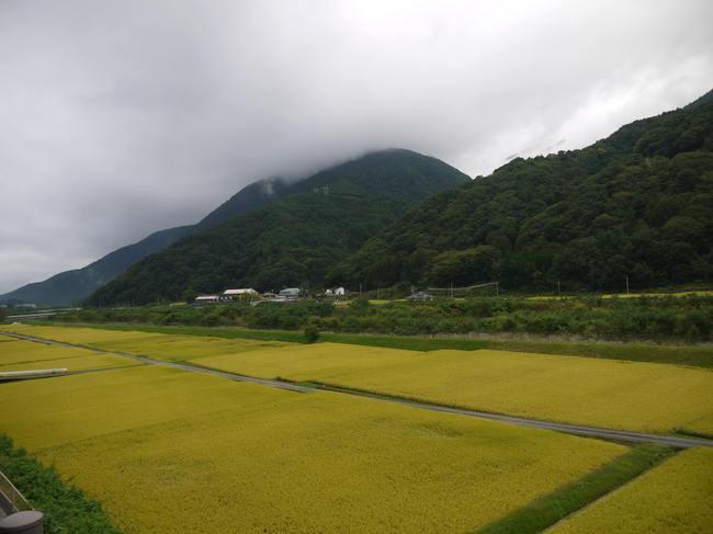 1419_富士見峠への最後の登り.JPG