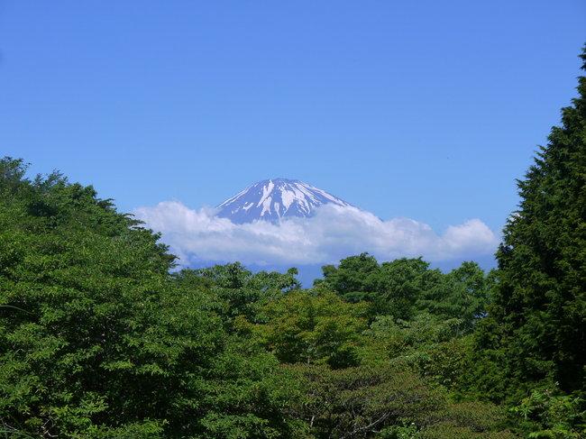 20150530_0912_富士山遠望.JPG