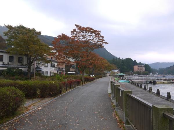 8_芦ノ湖紅葉_0835.JPG