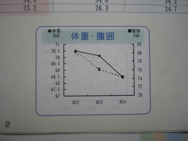 いつ見ても気持ちが良いグラフ.JPG