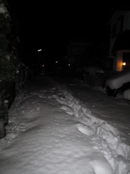 やっと止んだ雪.JPG