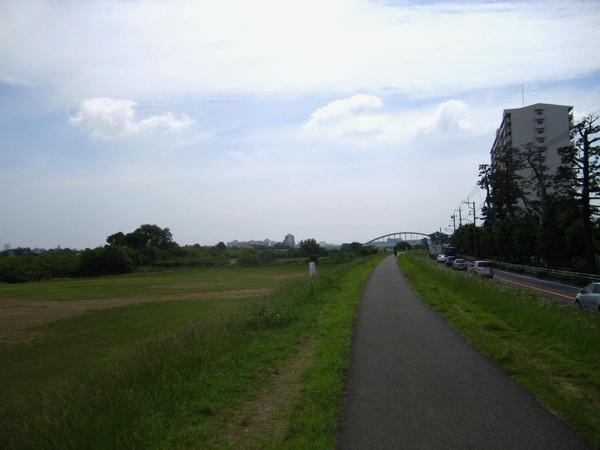 多摩サイ右岸.JPG
