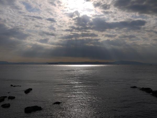 対岸は千葉.JPG