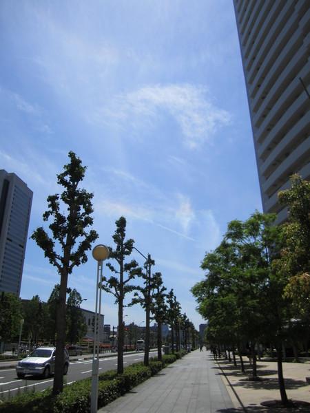 小規模な彩雲.JPG
