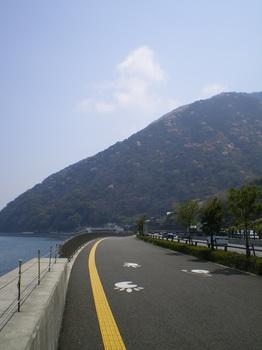 帰りのいつもの海沿いの道.JPG