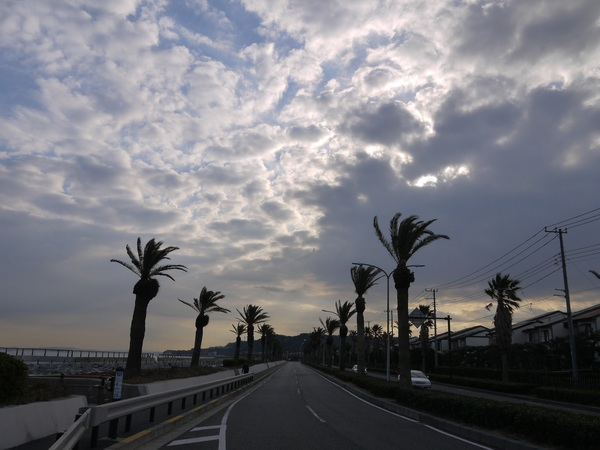 朝の馬堀海岸_S.JPG