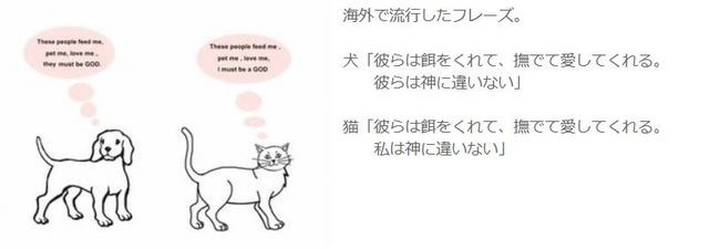 猫と犬の違い.JPG