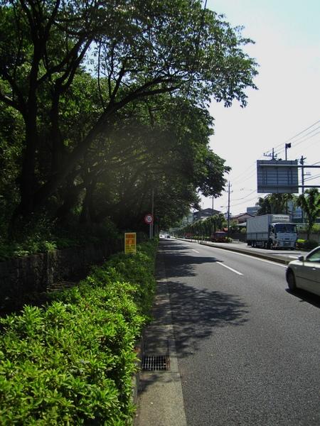 県道20号入り口R.JPG