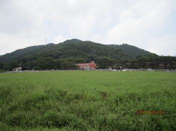 神奈川唯一の牧場.JPG