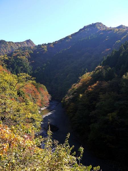 裏ヤビツ渓谷.JPG