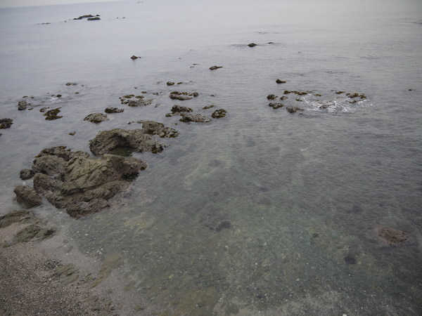 透明度が高い海.JPG